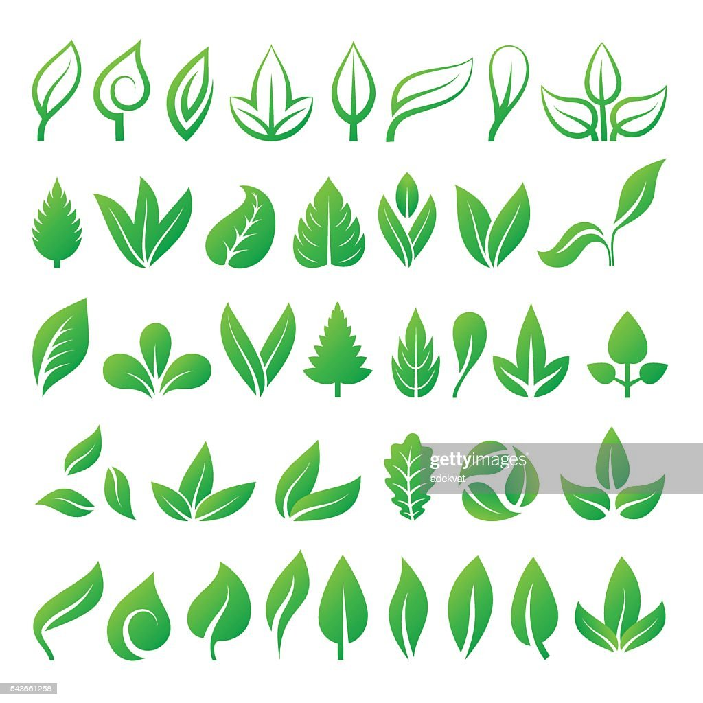 Leaf icons vector illustration.