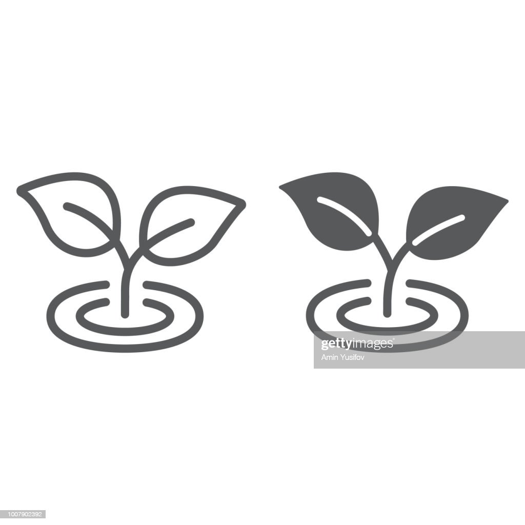 Leaf line and glyph icon, ecology and plant, flora sign, vector graphics, a linear pattern on a white background, eps 10.