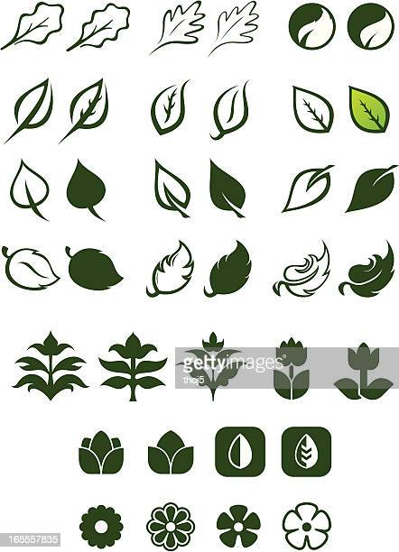 Leaf Logos Vector Set 2
