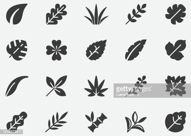 葉,自然,木,植物,秋,ピクセルパーフェクトアイコン - オークの葉点のイラスト素材/クリップアート素材/マンガ素材/アイコン素材