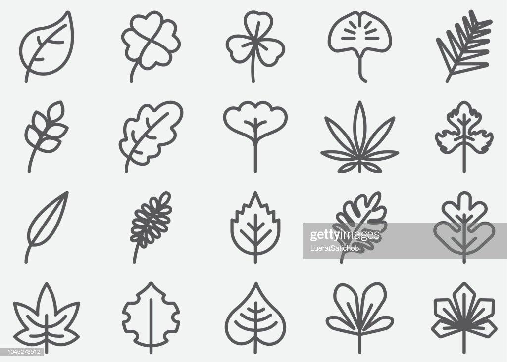葉の形の線のアイコン : ストックイラストレーション