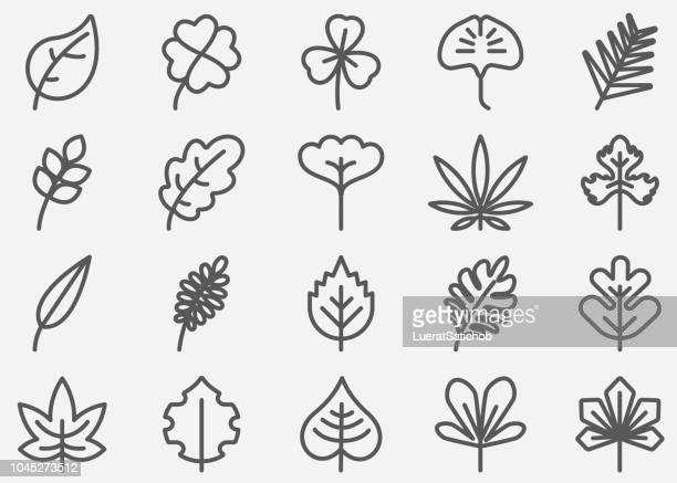 Leaf Shape Line Icons