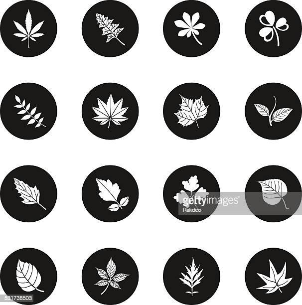 leafs shape icons - black circle series - hemp stock illustrations, clip art, cartoons, & icons