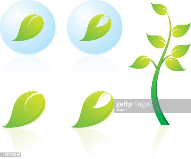 leaves icon - plant attribute stock illustrations, clip art, cartoons, & icons