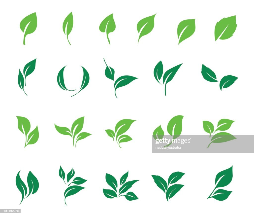 Leaves icon vector set. Ecology icon set.