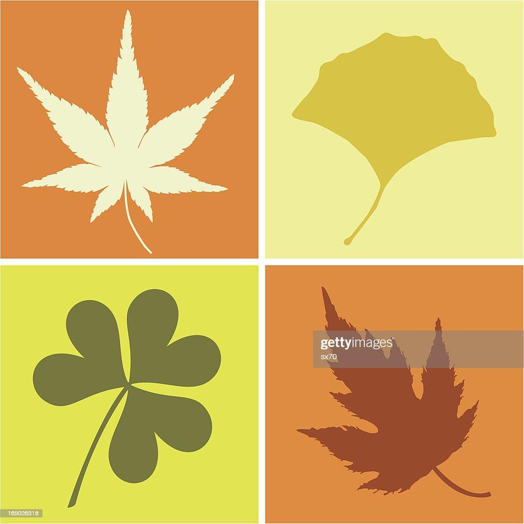 Leaves ( Vector )