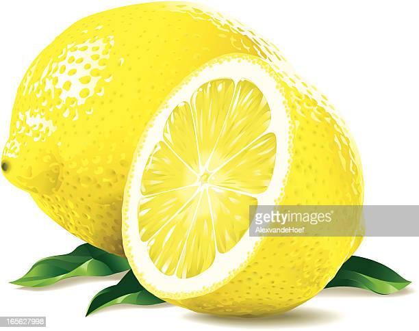 ilustrações, clipart, desenhos animados e ícones de limão e um lavabo - limão amarelo