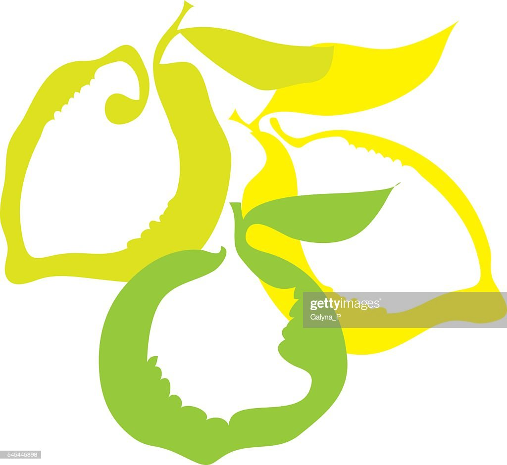 lemon and lime fruit simple decorative icon. vector illustration