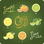 Lemon, Lime and Citrus fruit