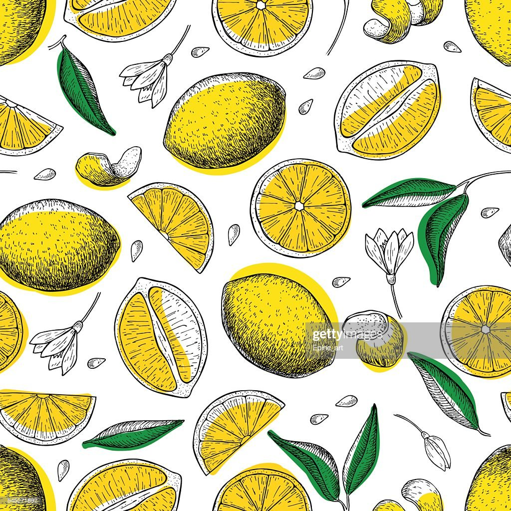Lemon vector seamless pattern. Drawing lemon colorful background