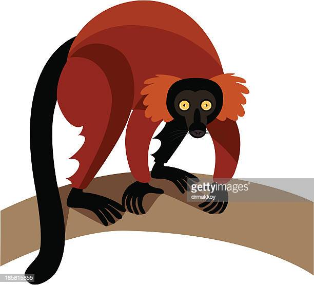 lemur - lemur stock illustrations, clip art, cartoons, & icons