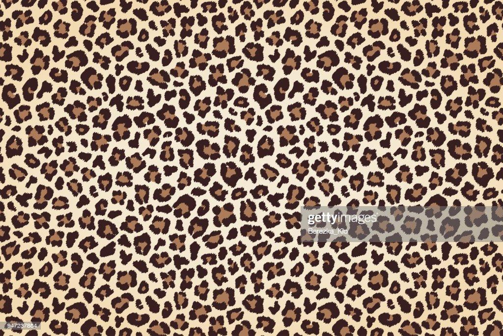 Leopard fur print, horizontal texture with dark borders. Vector