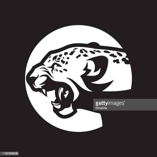 ilustraciones, imágenes clip art, dibujos animados e iconos de stock de silueta de cabeza de leopardo. gato salvaje con la boca abierta - icono vectorial cortado - puma