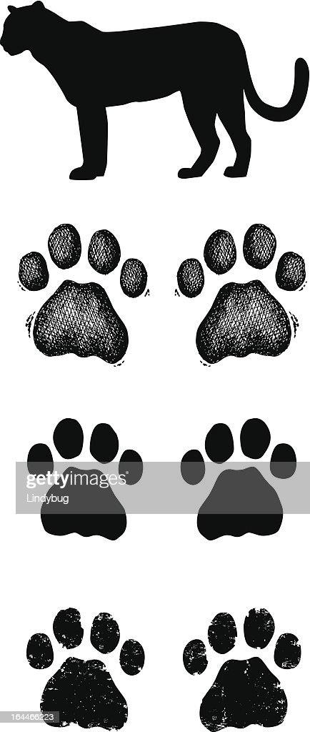 Leopard Paw Prints