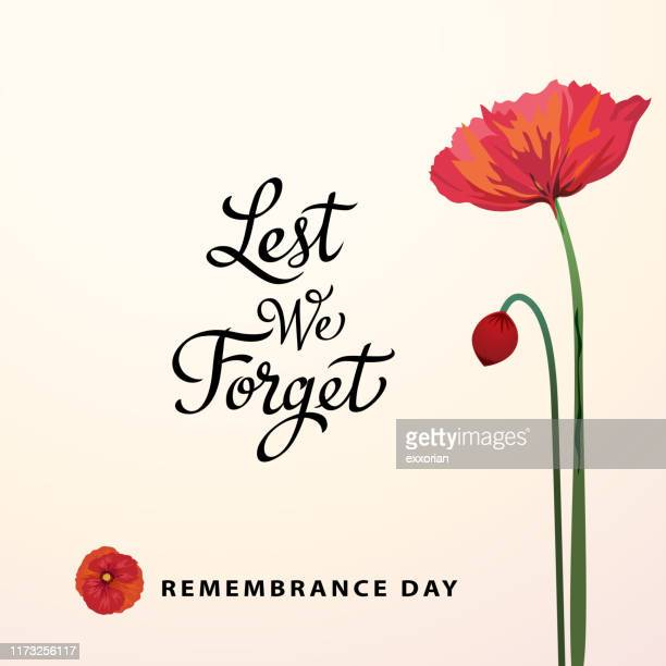 lest we forget remembrance day - anzac soldier stock illustrations