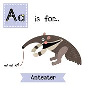 Letter A tracing. Anteater.