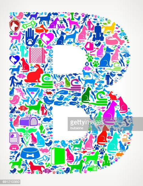 Letra B animales domésticos y animales domésticos Vector iconos fondo
