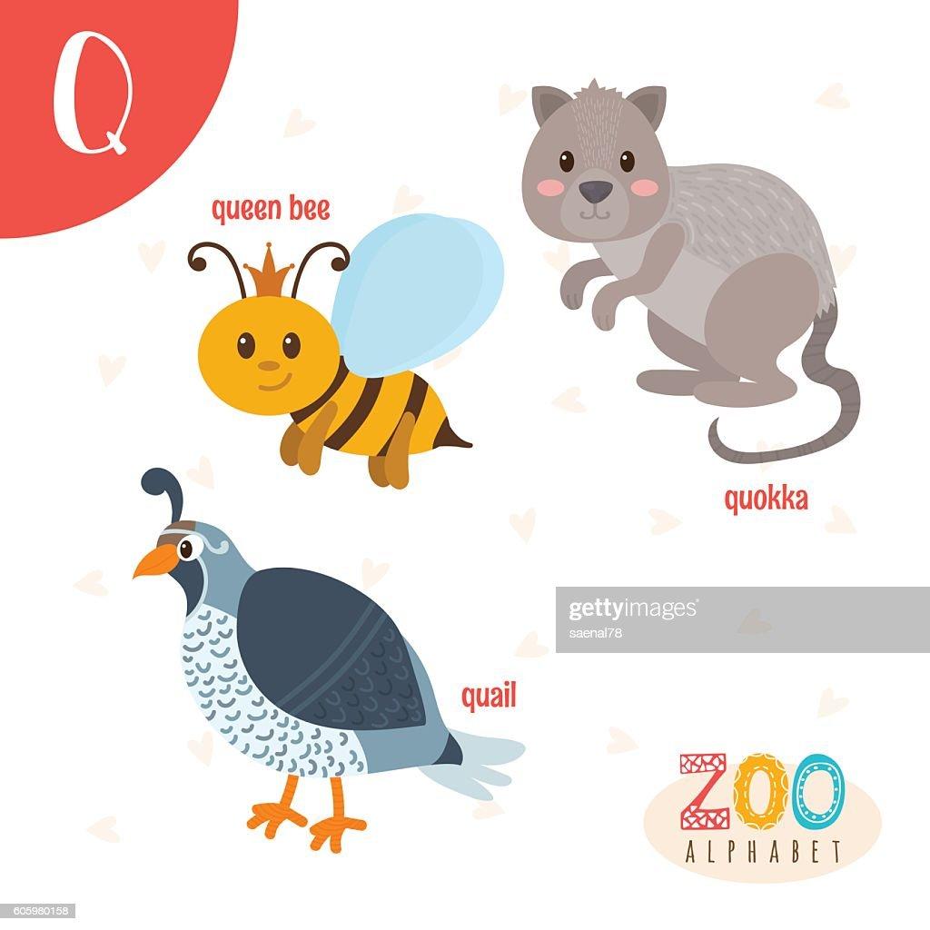 Letter Q. Cute animals. Funny cartoon animals in vector