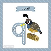 Letter Q lowercase tracing. Quail bird perching on wood log