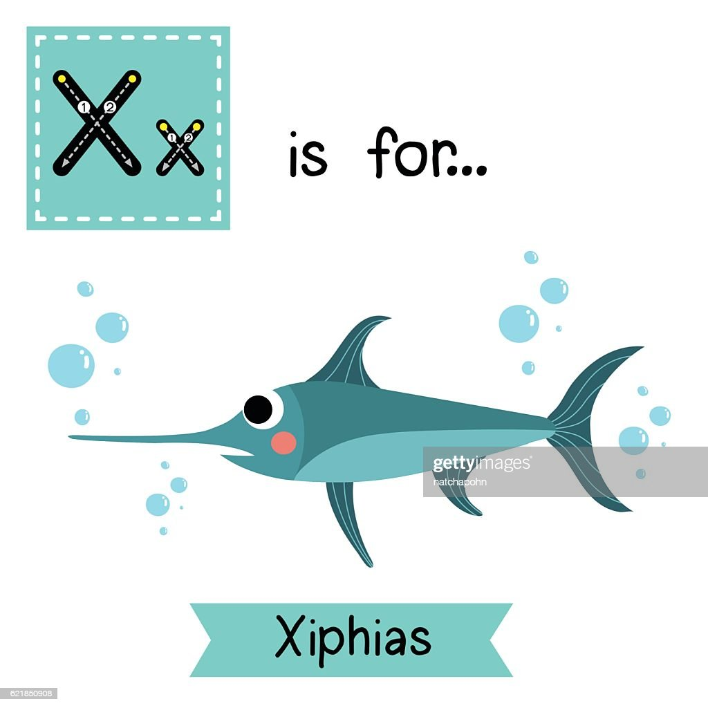 Letter X tracing. Xiphias.