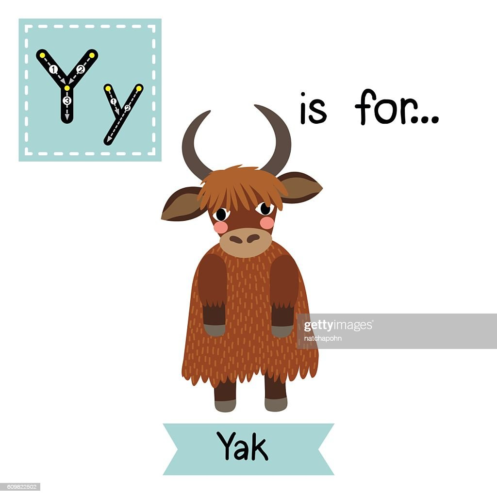 Letter Y tracing. Yak standing on two legs.