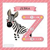 Letter Z uppercase tracing. Zebra