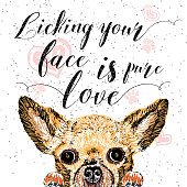 Licking your face is pure love, hand drawn card, lettering calligraphy motivational quote for dog lovers and typographic design. Cute, friendly, smiling, inspirational doggie with hearts and sparkle.