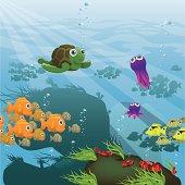 Life Aquatic - Reef