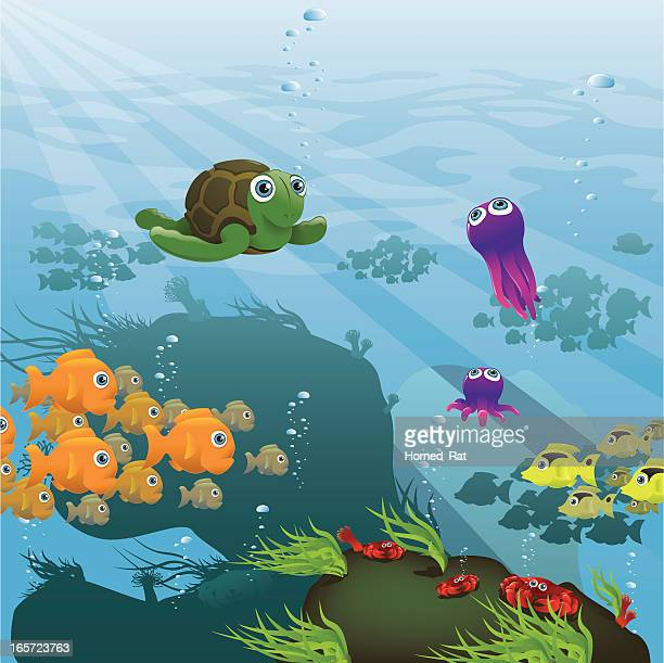 life aquatic - reef - green turtle stock illustrations, clip art, cartoons, & icons