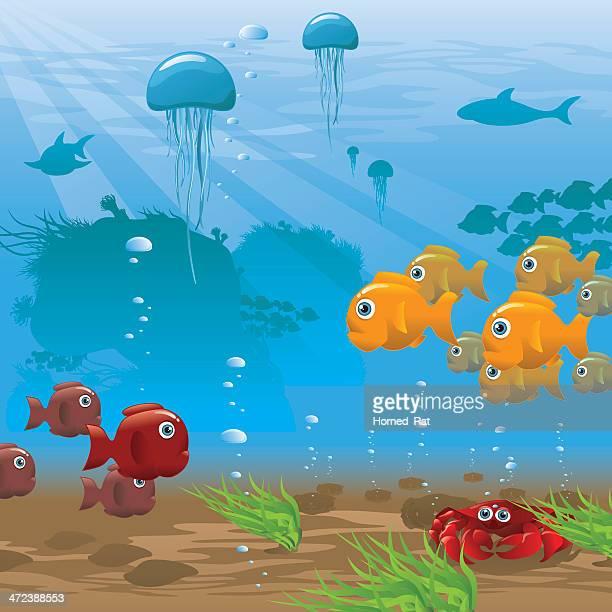 life aquatic - seafloor - illustration - ocean floor stock illustrations