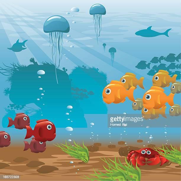 Life Aquatic - Seafloor