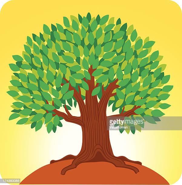 Life Giving Tree