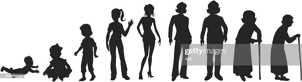 Lifecycle of a woman : stock illustration