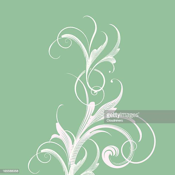 light green scroll background - embellishment stock illustrations