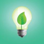 Lightbulb with leaf inside