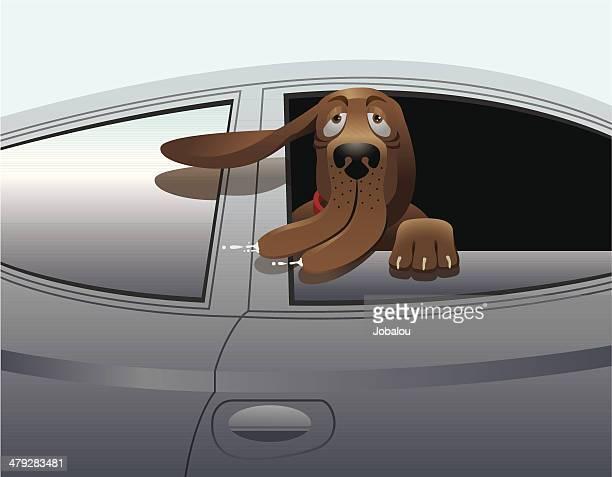 i like speed - animal saliva stock illustrations, clip art, cartoons, & icons