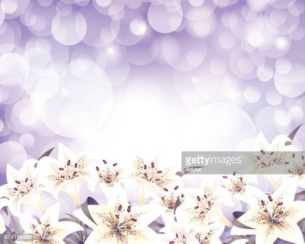 lily background - easter lily stock illustrations