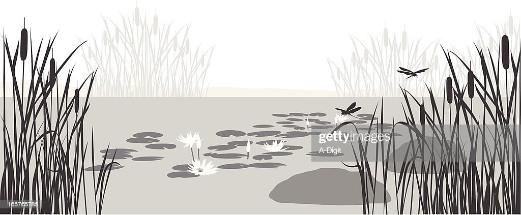 Lily Pond Vector Silhouette