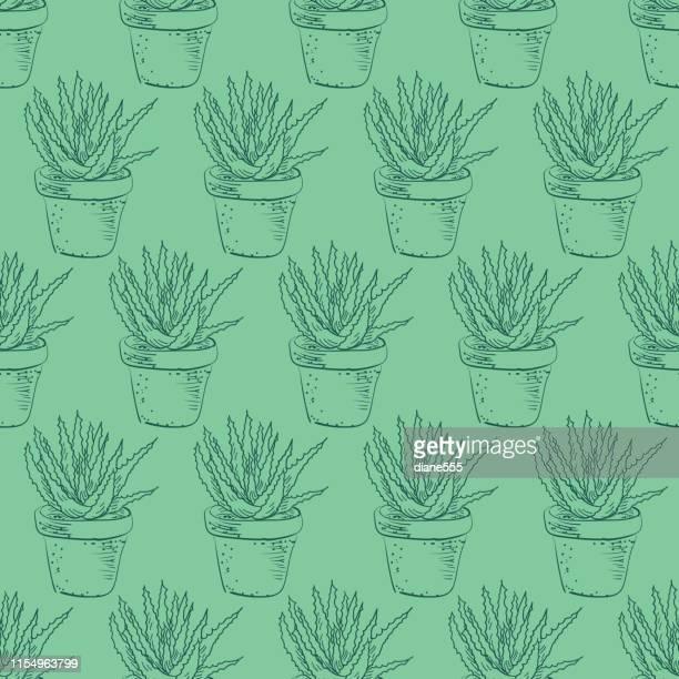 illustrations, cliparts, dessins animés et icônes de ligne art cactus motif - plante verte