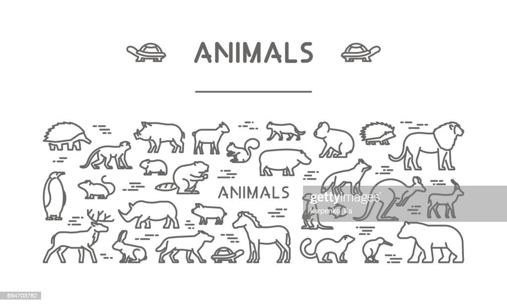 Line banner for american, african and australian animals
