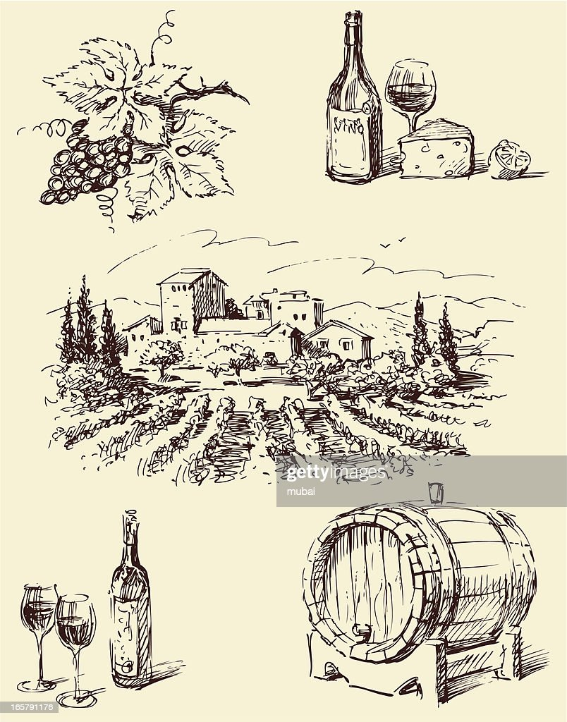 Line drawings of winemaking imagery