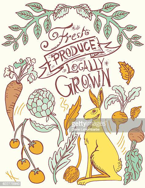 linoblock print of rabbit and vegetables - vegetable garden stock illustrations, clip art, cartoons, & icons