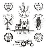 Linocut Food Icons