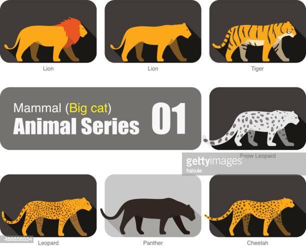 ilustraciones, imágenes clip art, dibujos animados e iconos de stock de lion y gran colección de silueta de animales de dibujos animados gato - puma