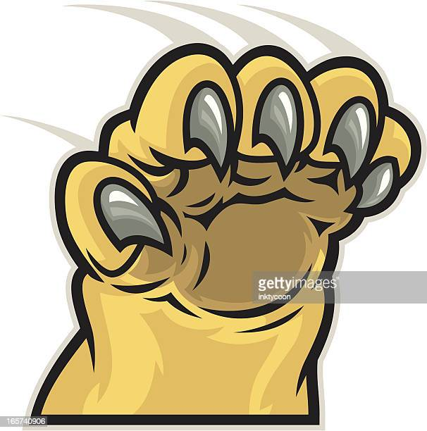 lion cougar paw - claw stock illustrations, clip art, cartoons, & icons