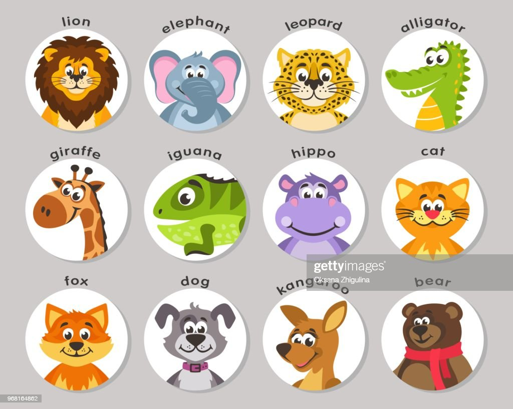 Lion, elephant, leopard, alligator, giraffe, iguana, hippo, cat, fox, dog, kangaroo, bear.