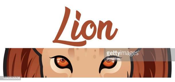 ilustrações, clipart, desenhos animados e ícones de olho de leão - zimbabwe