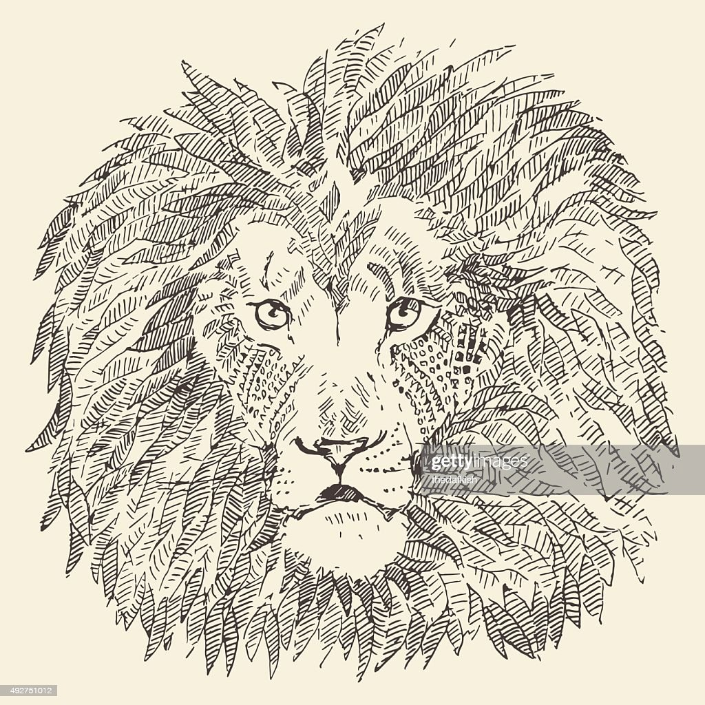 Lion head ethnic style illustration drawn sketch