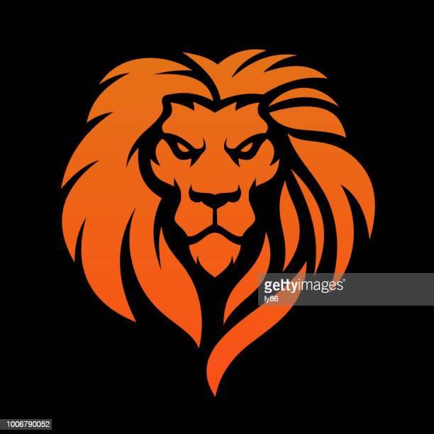 lion head - animal head stock illustrations