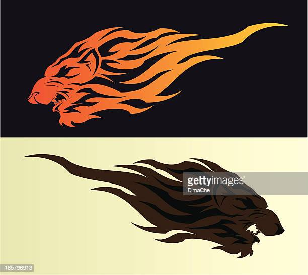 lion head - animal mane stock illustrations